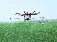 甘洛县首次引用无人机对农作物统防统治,保障粮食丰收!