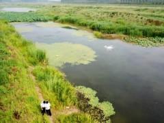 新乡出动无人机保护母亲河,提高环境质量